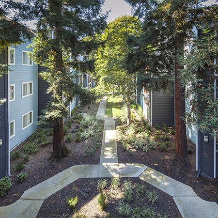 Pathway at Metro Six55 Apartments in Hayward