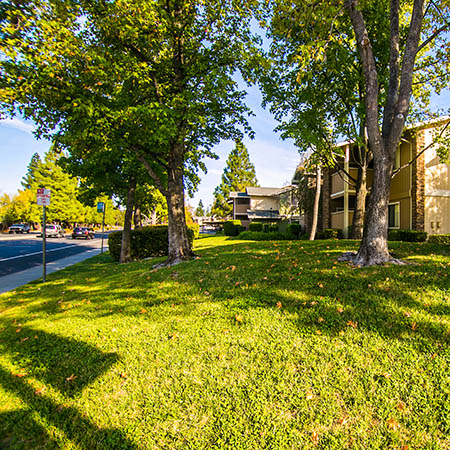 Neighborhood photo of Sommerset Apartments in Vacaville