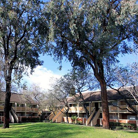 Neighborhood photo of The Timbers Apartments in Hayward