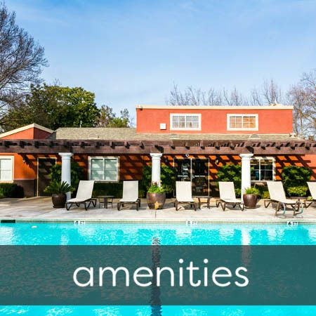 Amenities at The Woodlands Apartments