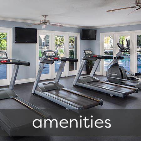 Amenities at Village Oaks