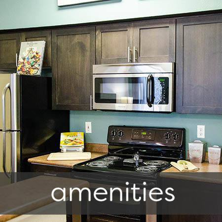 Amenities at Wildreed Apartments
