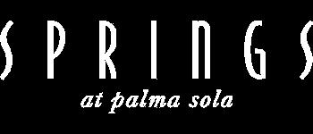 Springs at Palma Sola