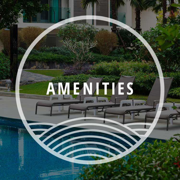 Amenities at Bradley Park Apartments
