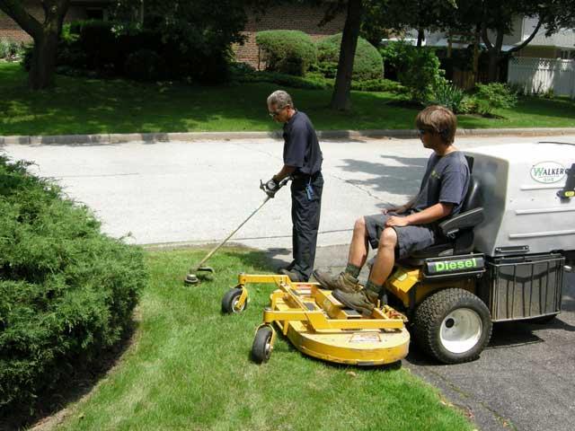 property maintenance guys