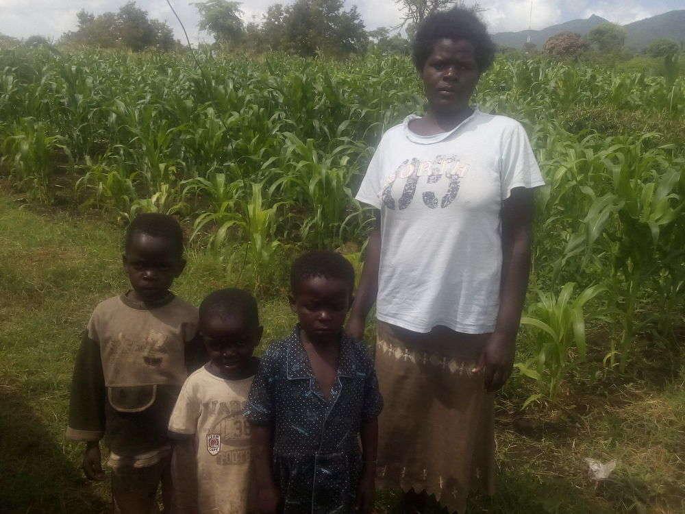 Pheobe's family