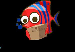 Ambist Aquatics Store Logo