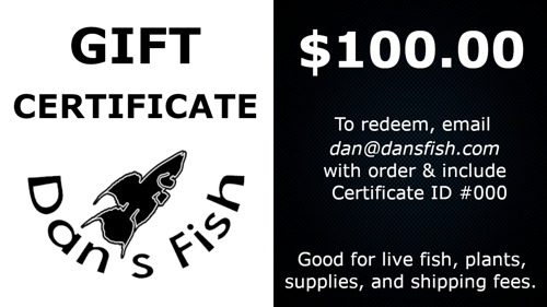 Gift Certificate, $100.00