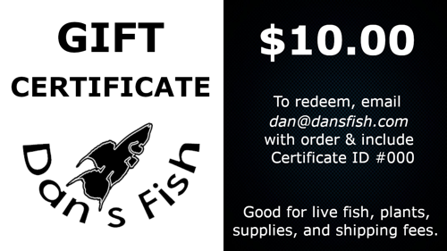 Gift Certificate, $10.00