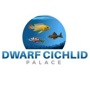 Dwarfcichlidpalace Store Logo