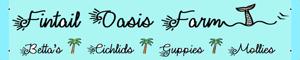 Fintail Oasis Farm Logo