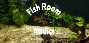 Fish Room Addict Store Logo