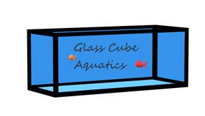 Glass Cube Aquatics Store Logo