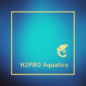 H2PROaquatics Logo