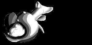 IntricateAquatics Store Logo