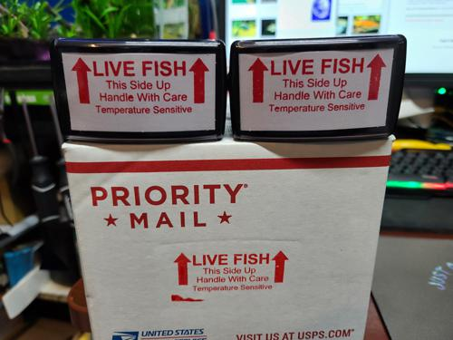 Live Fish Shipping Stamp