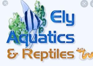 MagPets Store Logo