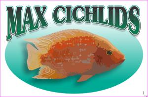 MaxCichlids Store Logo