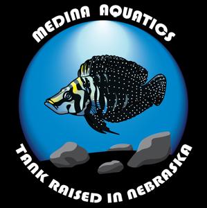Medina Aquatics Logo