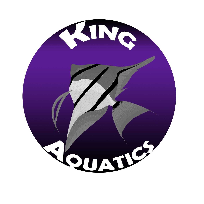 King Aquatics Logo