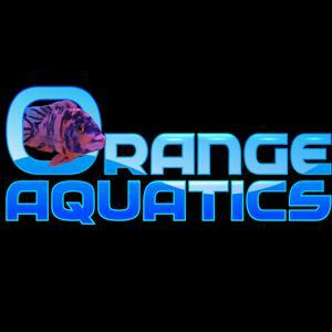 Orange Aquatics Logo