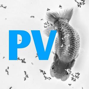 Pondviewranchu Logo