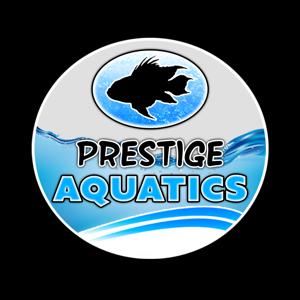 Prestige Aquatics Logo