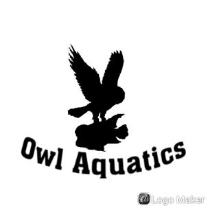 Owl Aquatics Logo