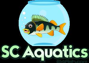 SC Aquatics Logo