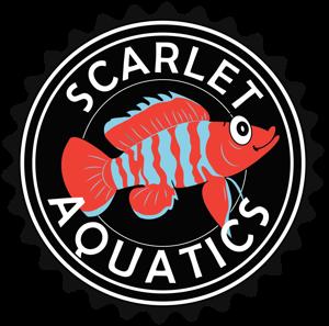 Scarlet Aquatics Logo