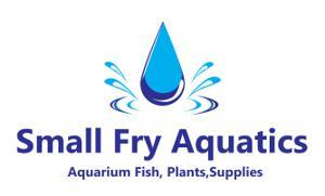Small Fry Aquatics Logo