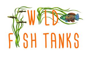 Wild Fish Tanks Logo