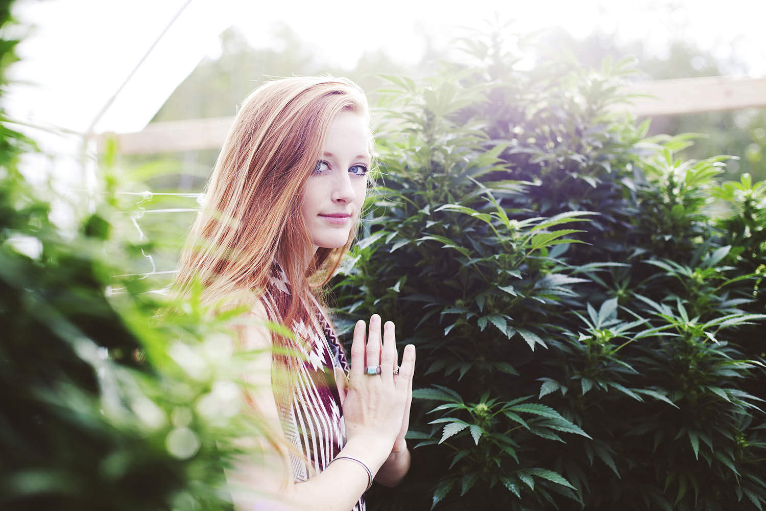 Weed Pray Love - How Cannabis Use Has Shaped Our World