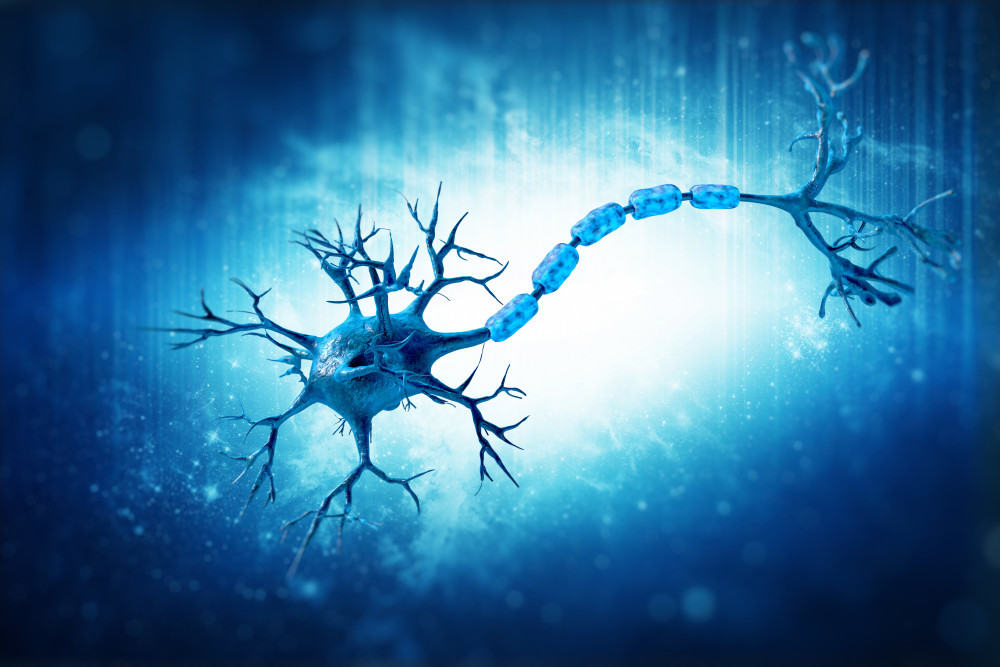Multiple Sclerosis MS and Cannabis