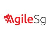 Agile Singapore 2014