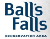 40th Annual Ball's Falls Thanksgiving Festival