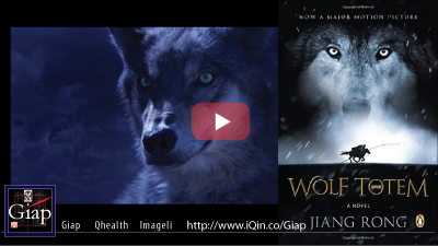 The Iconic Wolf Totem (Le Dernier Loup) Soundtrack by the legendary James Horner