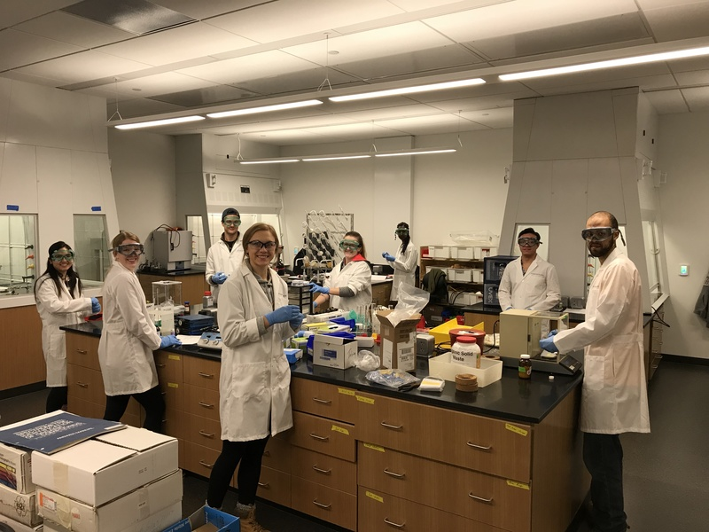 Advanced Synthesis Lab