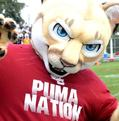 Joe Puma photo