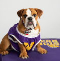 WIU Foundation photo