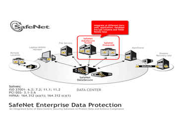 SafeNet aiding global priority of Secure &