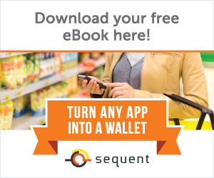 Any-App-Into-a-Wallet-E-Book-300x250