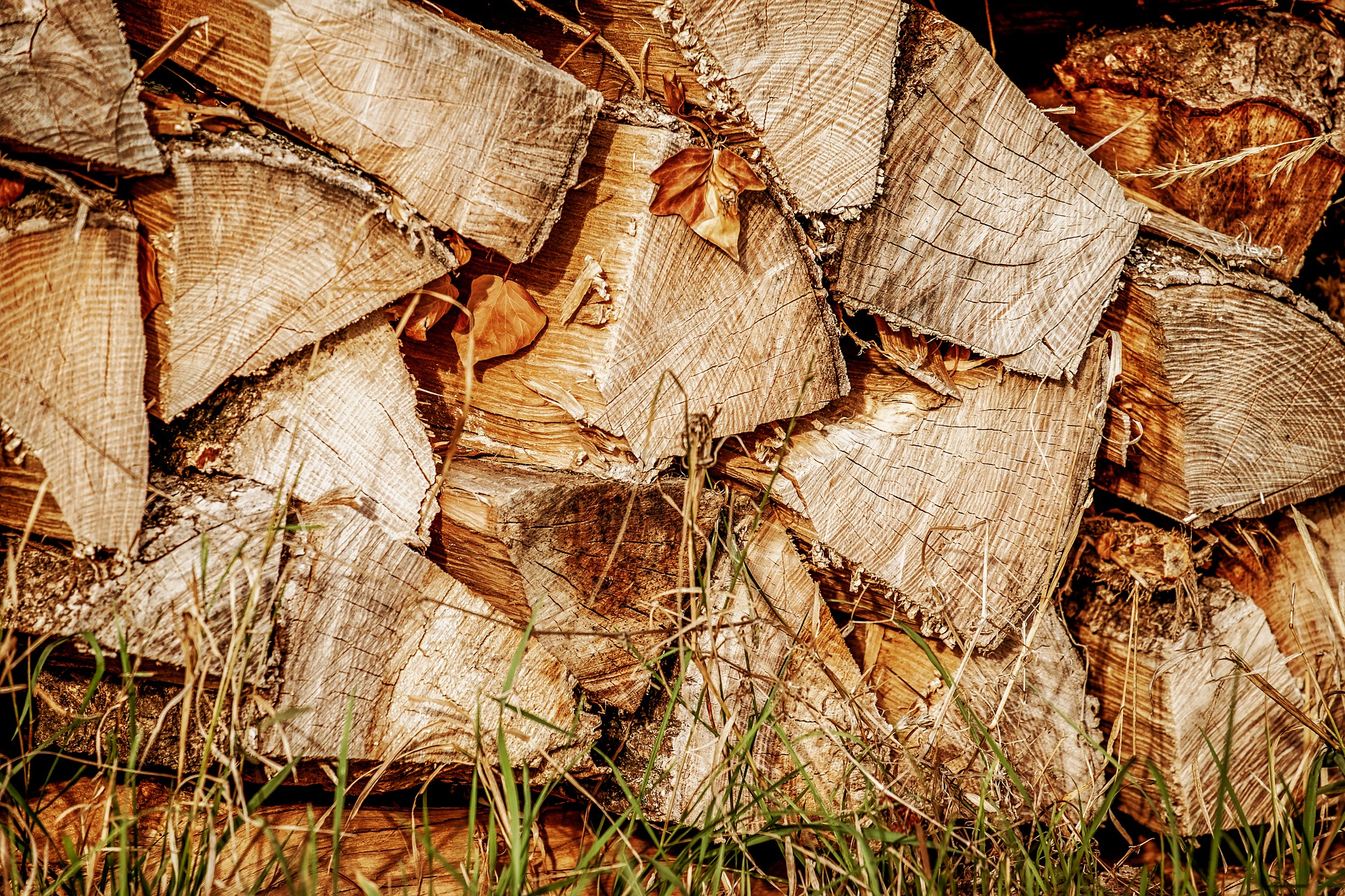 Firewood Arranged In A Stack 202161931027