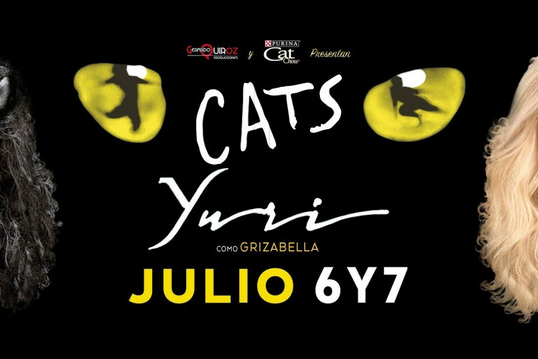Cats Interlomas