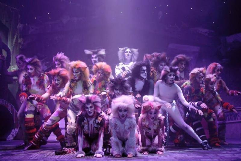 Cats, el musical