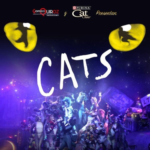 CATS el musical, Teatro del Parque