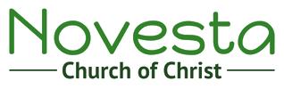 Novesta logo