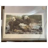 Brian Jarvi Fishing the Shallows Eagle Print
