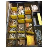 Plastic Container of Assorted Screws