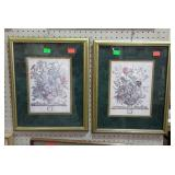 Pair of framed botanical, calendar prints.